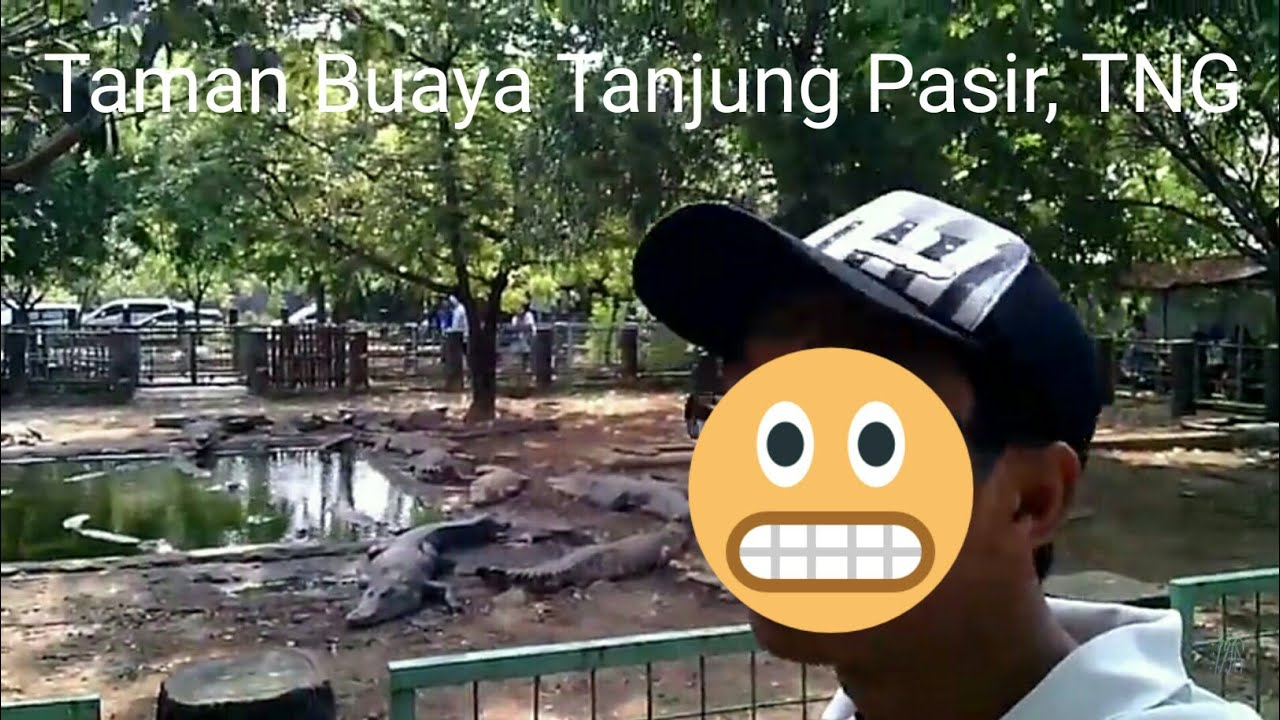 Taman Buaya Tanjung Pasir Tangerang Banten Youtube Pantai Burung Kab