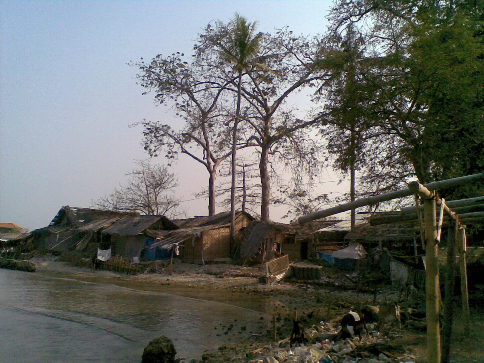 Pulau Cangkir Antara Tiada Oleh Cakra Inderasena Kab Tangerang