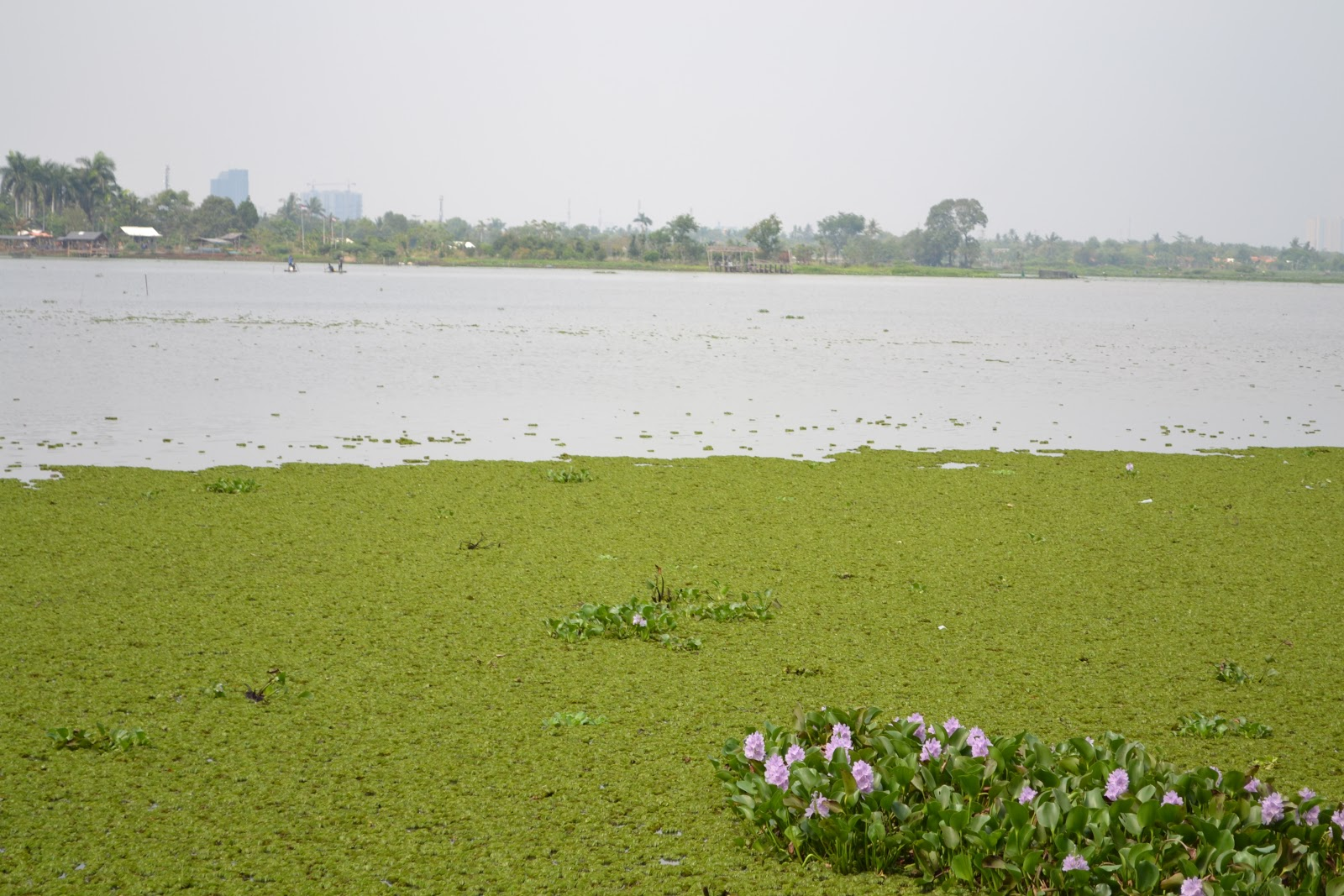 Rawa Cipondoh Kota Tangerang Batikbesurek Kab