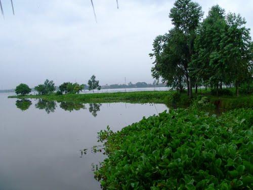 Wikigogo Cipondoh Lake Interesting Tangerang Rawa Kab