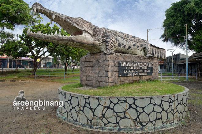 Buaya 1 Jpg Taman Indonesia Jaya Bekasi Tanjung Pasir Kab