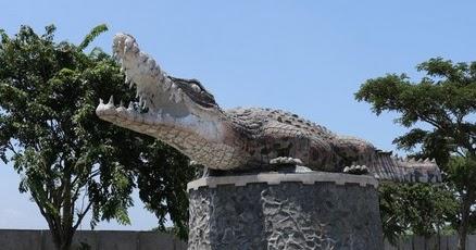 Pesona Keindahan Wisata Taman Buaya Tanjung Pasir Tangerang Banten Daftar