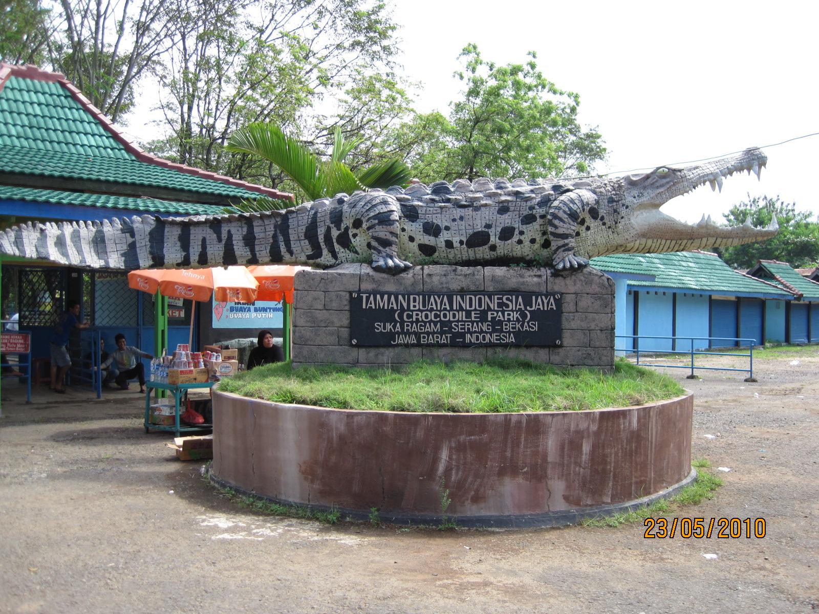 Wisata Tempat Bekasi Asik Unik Mengamati Reptil Pemangsa Taman Buaya