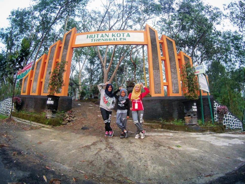 Hutan Kota Wisata Terbaru Trenggalek Traveling Yuk Alun Kab