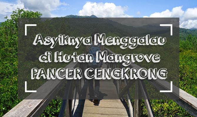 Asyiknya Menggalau Jembatan Pancer Cengkrong Eksotik Gogonesia Travel Blog Hutan