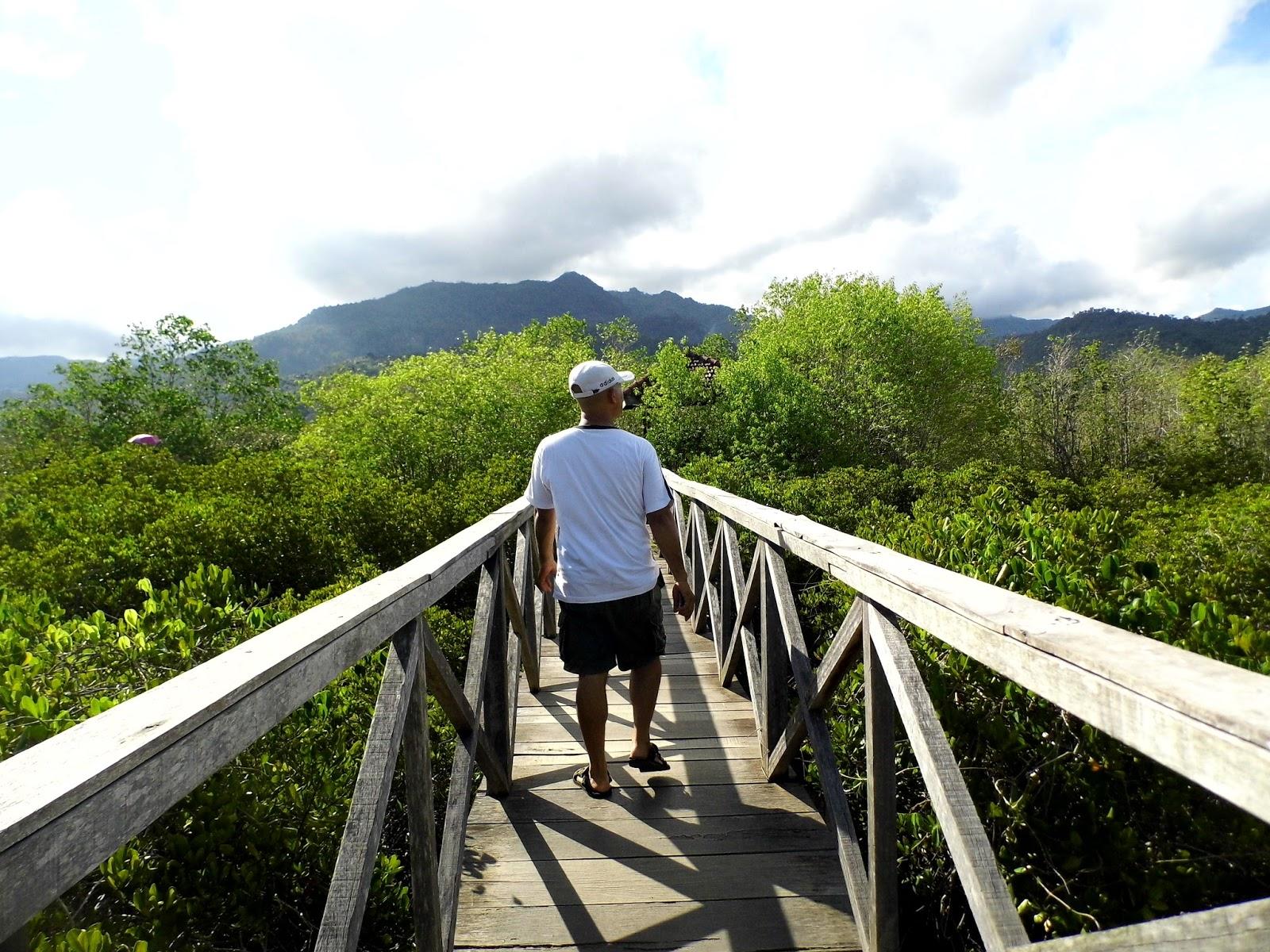 Galau Melanda Main Pancer Cengkrong Aja Cozer Hutan Mangrove Kab