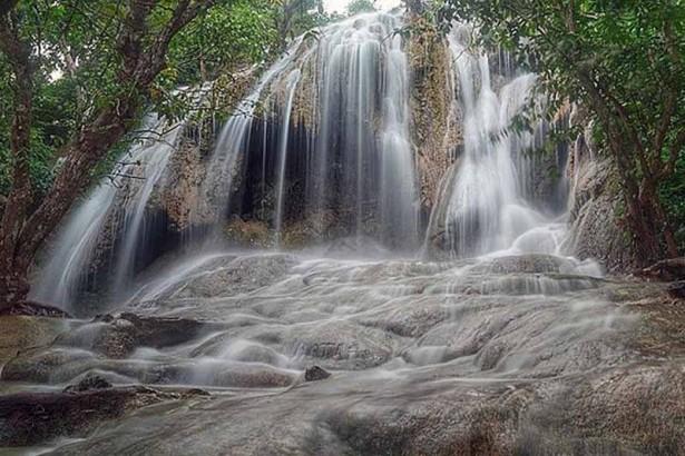 Obyek Wisata Trenggalek Patut Dikunjungi 10 Hutan Mangrove Pancer Cengkrong