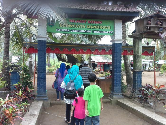 Sensasi Pasir Putih Ecowisata Mangrove Trenggalek Oleh Mas Selamat Datang
