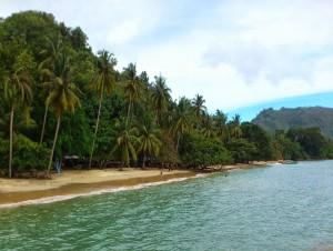 8 Pantai Cantik Kamu Temukan Trenggalek Yuk Piknik Kondisi Geografis