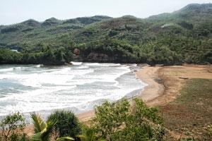 Konang Beach Tourism Trenggalek East Java Suitable Surfing Pantai Damas