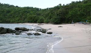Ngampiran Beach Tourism Trenggalek East Java Purity Bertempat Desa Tawing