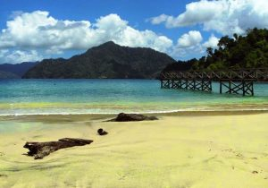 Pantai Damas Daftar Tempat Wisata Terbaru Pasir Putih Trenggalek Kab