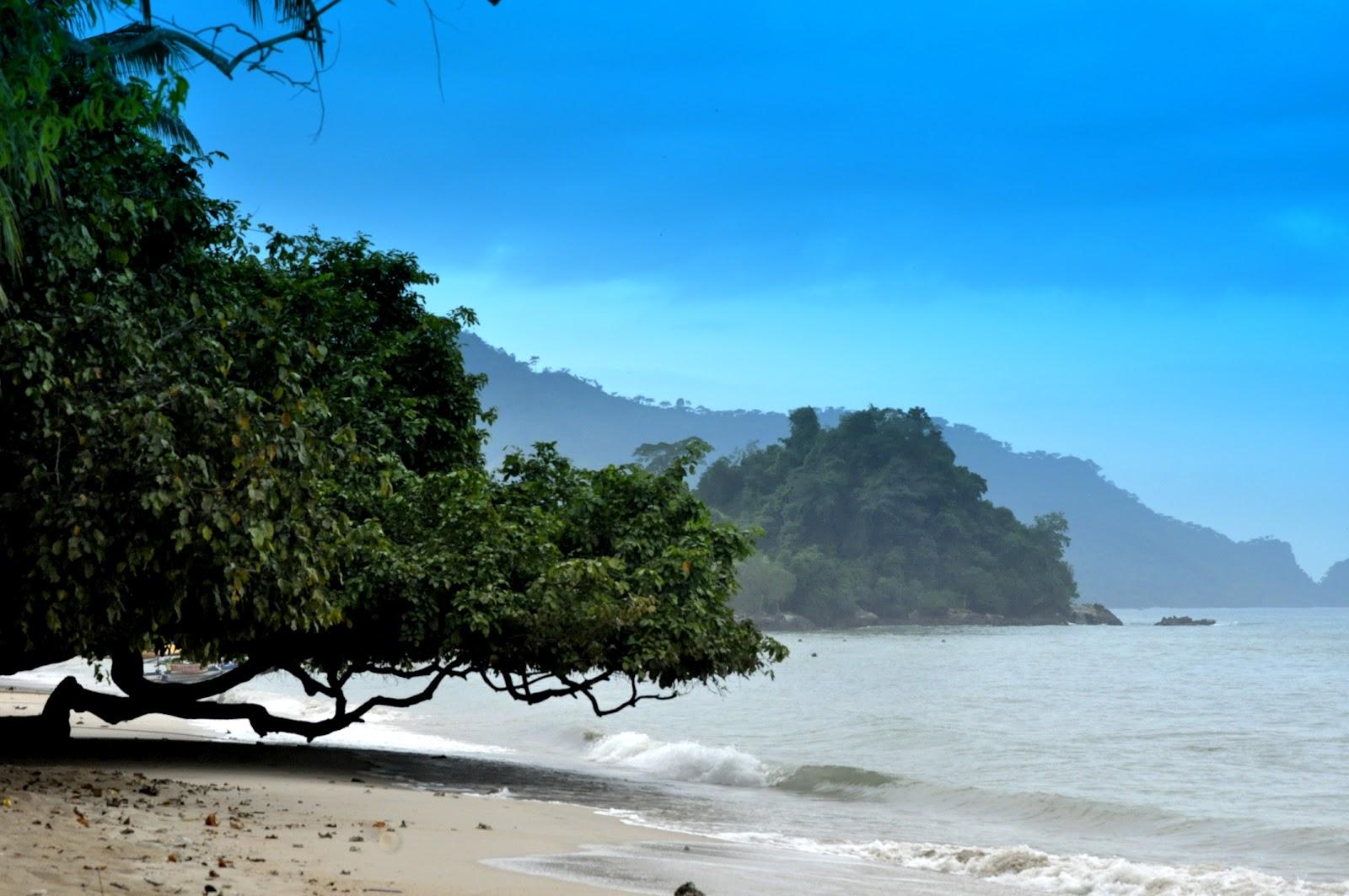 Pantai Pasir Putih Keindahan Trenggalek Dsc0388 Damas Kab
