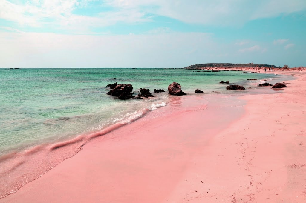 Wisata Pantai Ngadipuro Trenggalek Jawa Timur Daltonnet Menjadi Pilihan Destinasi