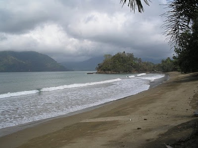 Wisata Populer Pantai Damas Kabupaten Trenggalek Kacamatawisata Alam Berupa Berada