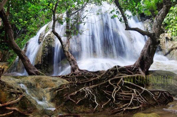 Grobogan Sewu Air Terjun Pesisir Pantai Pelang Trenggalek Pohon Unik