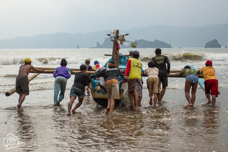 Ratusan Nelayan Garut Mencari Ikan Layur Pantai Konang Trenggalek Kab