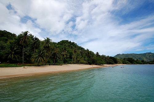 Informasi Tentang Usaha Peluang Pantai Prigi Kabupaten Trenggalek Jawa Timur