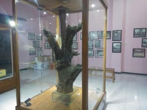 Portaltuban Museum Kambang Putih Menjadi Primadona Wisata Pelajar Kab Tuban