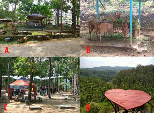 Pemandian Air Panas Prataan Siswapedia Keterangan Gambar Taman Kandang Rusa