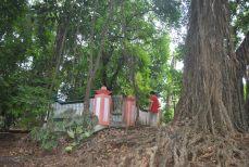 Pemandian Bektiharjo Kec Semanding Kab Tuban Hanif Blog