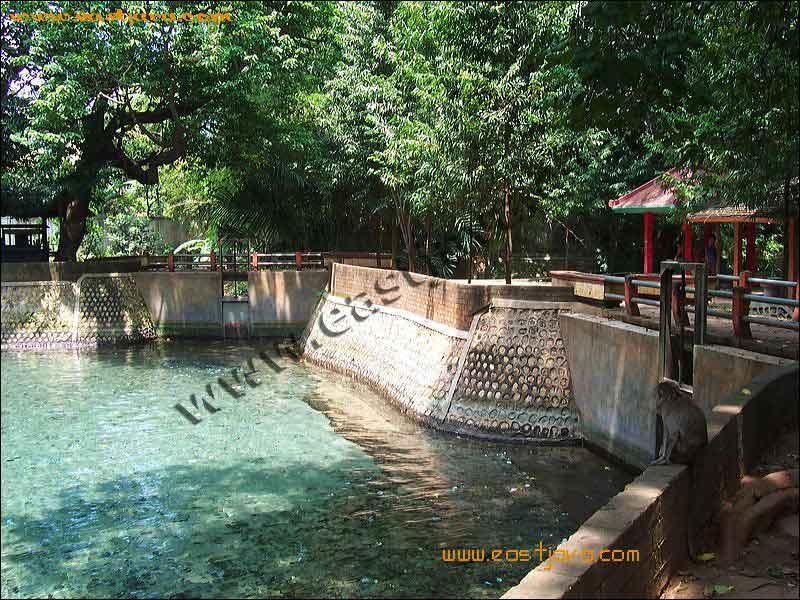 Pesona Wisata Tuban Pemandian Sumber Mata Air Alami Berfungsi Sebagai