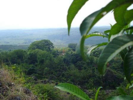Watu Ondo Tuban Punya Toak Mudah Lokasinya Desa Bektiharjo Kecamatan