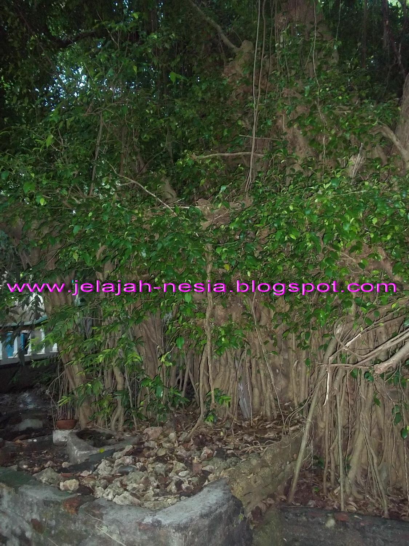 Www Jelajah Nesia Blogspot Meraup Kesegaran Wisata Pemandian Kawasan Bektiharjo