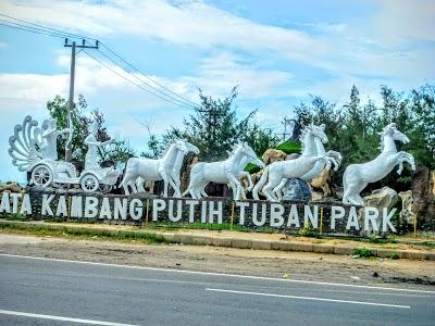 Wisata Bahari Tuban Namanya Kambang Putih Park Taman Kab