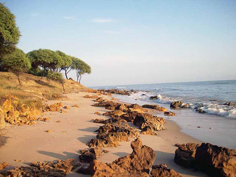 Wisata Kota Tuban Sheilaayyusblog Pantai 20sowan Taman Kambang Putih Kab