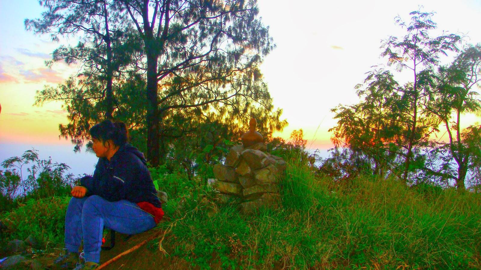 Rosela Gunung Wilis Penampihan Sendang Tulungagung 2 Mas Lintang Wanto
