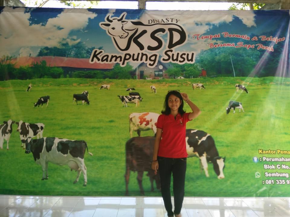 Kampung Susu Dinasty Tulungagung Indonesia Kab