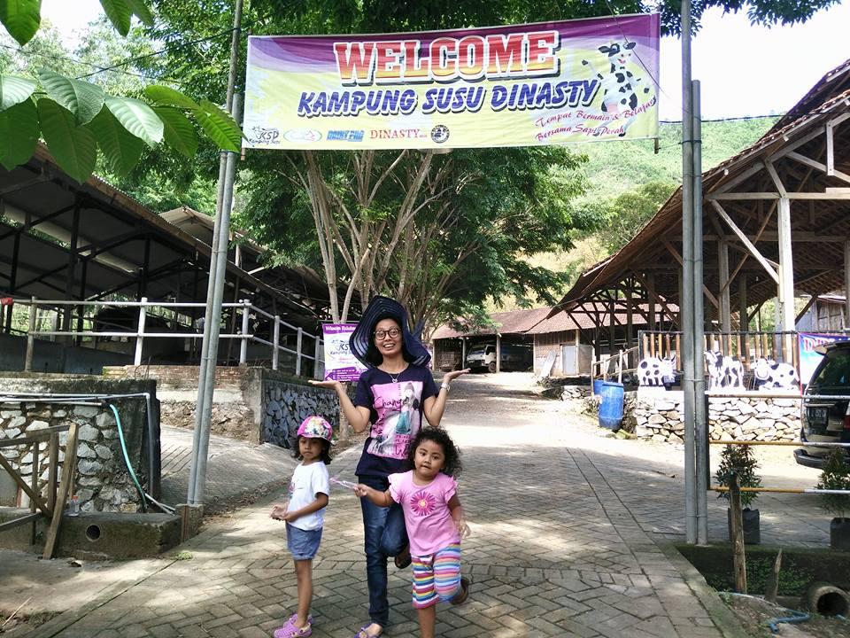 Kampung Susu Dinasty Tulungagung Sindopos Citizen Suasana Lokasi Foto Kacamatawisata