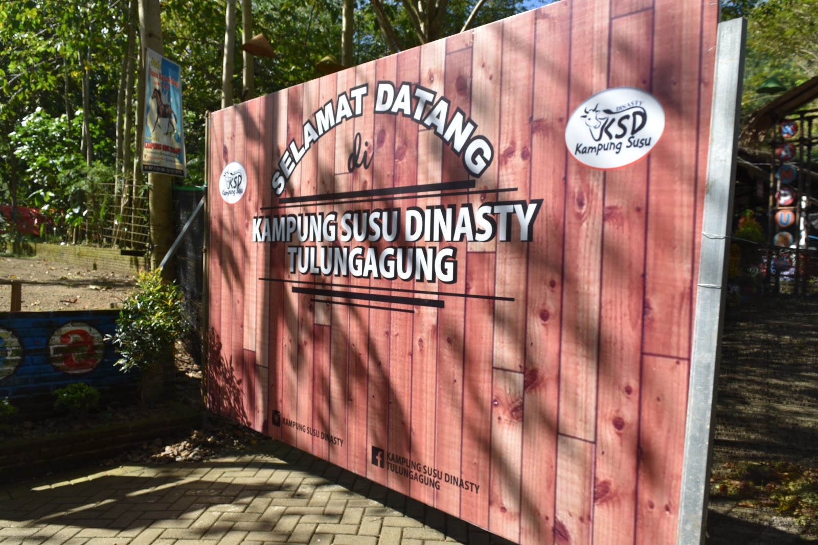 Kampung Susu Dinasty Wisata Edukasi Tulungagung Belajar Trading Kab