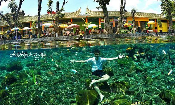 Wisata Air Desa Ponggok Tempat Renang Snorkling Keindahan Taman Bawah