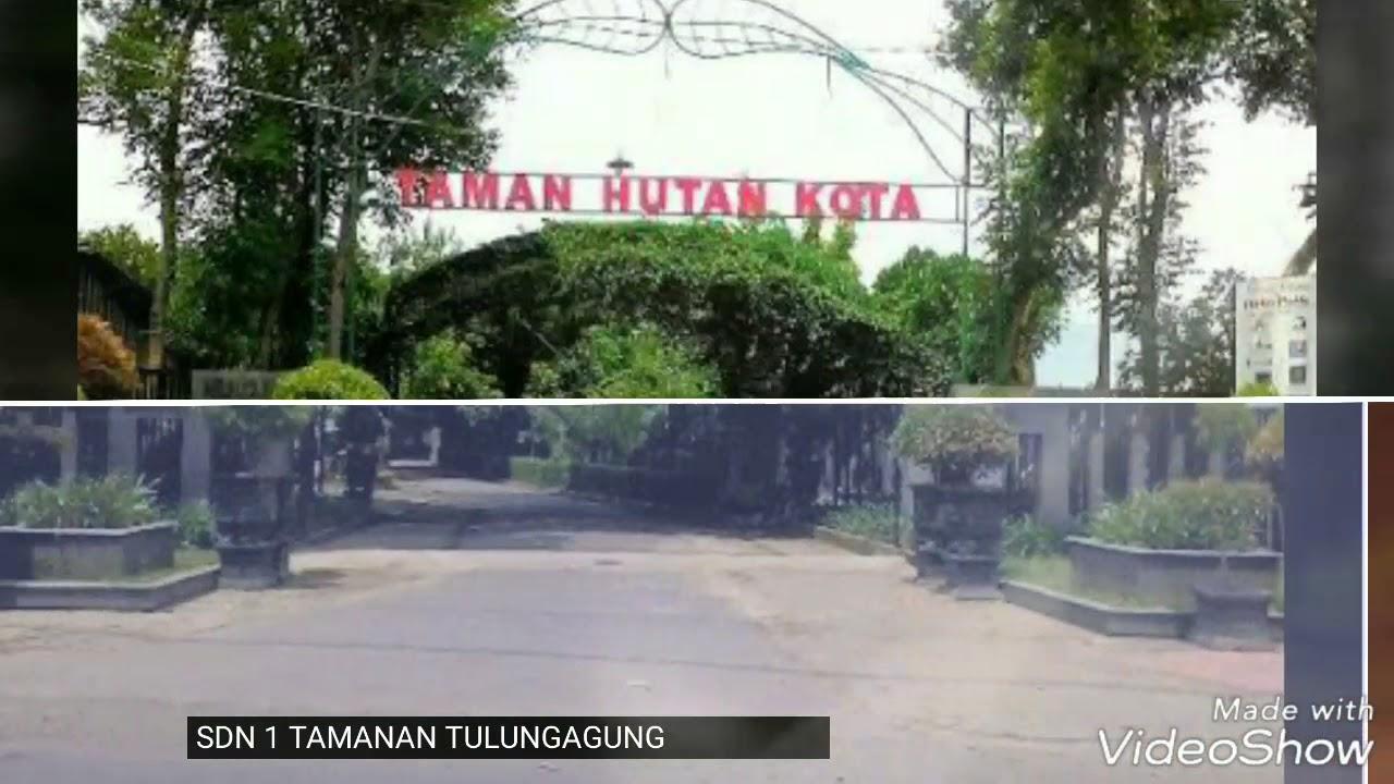 Huko Hutan Kota Tulungagung Youtube Taman Ngrowo Kab