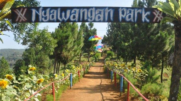 Desa Nyawangan Kec Sendang Kab Tulungagung Pesona Park Rute Menuju