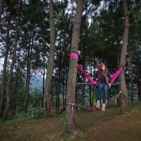 Images Nyawangan Instagram Meet Park Inframe Annisafatul Azizah Sendang Tulungagung
