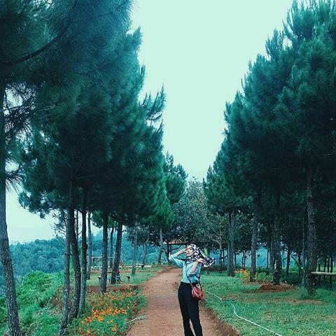 Jelajah Tulungagung Jelajahtulungagung Instagram Photos Videos Sampean Ngadem Nek Daerah