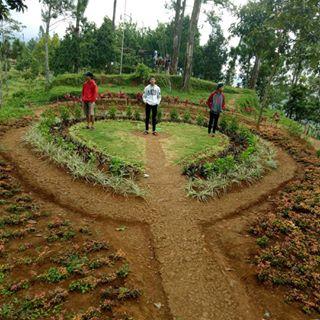 Tag Nyawangan Instagram Pictures Instarix Nyawanganpark Taman Kab Tulungagung