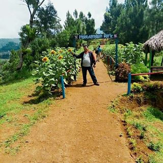 Tag Nyawanganparktulungagung Instagram Pictures Instarix Lokasi Nyawangan Park Desa Kab