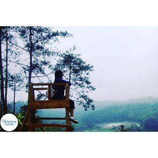 Tag Nyawanganparktulungagung Instagram Pictures Instarix Nyawangan Park Berada Perbukitan Desa