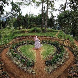 Tag Nyawanganparktulungagung Instagram Pictures Instarix Wajah Nyawangan Park Berada Perbukitan