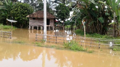 Akibat Banjir Kanan Kerugian Ditaksir Mencapai Rp700 Juta Https Www