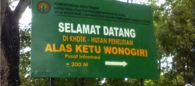 Obyek Wisata Wonogiri 11 Alas Kethu Arena Papan Luncur Olahraga