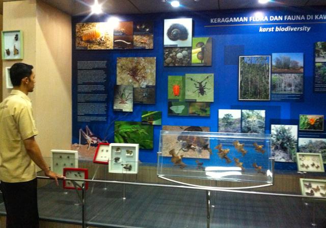 Museum Karst Wonogiri Sandingkan Prasejarah Agung Kurniawan Informasi Keragaman Hayati