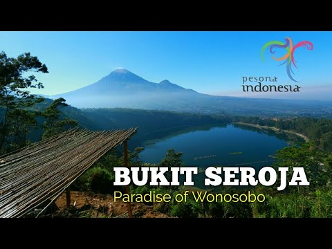 Bukit Seroja Paradise Wonosobo Episode Siji Youtube Puncak Kab