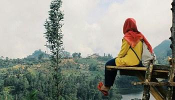 Wisata Alam Bukit Lembah Seroja Wonosobo Sidengkeng Wana Petak 9