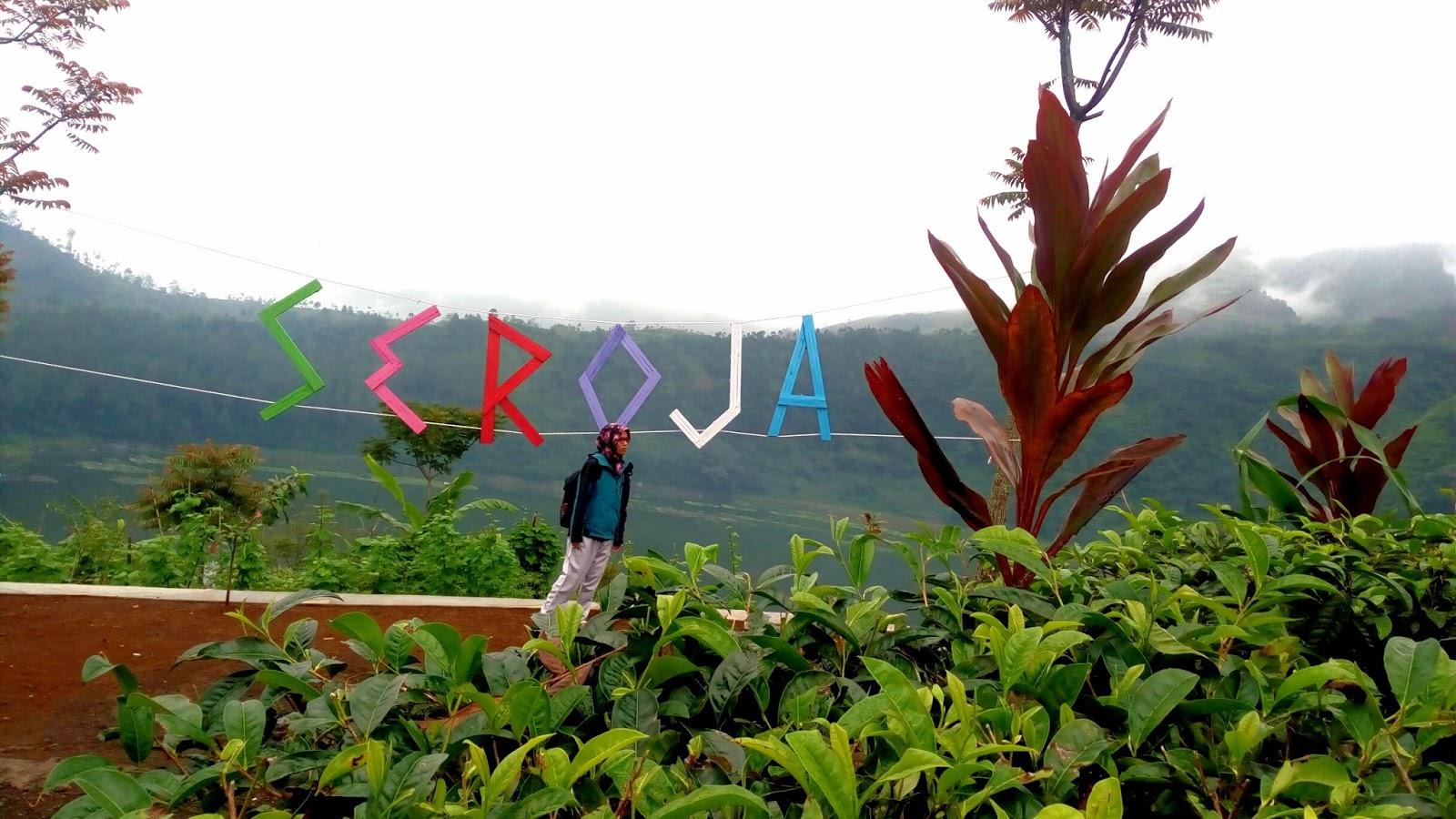 Wisata Alam Bukit Seroja Wonosobo Jawa Tengah Puncak Kab