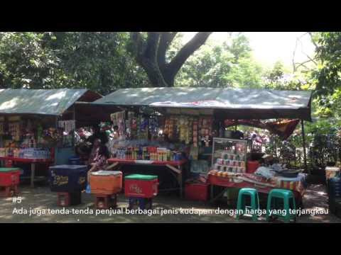 67 Ribu Ktp Jakbar Dicetak Worldnews Menilik Hutan Kota Srengseng